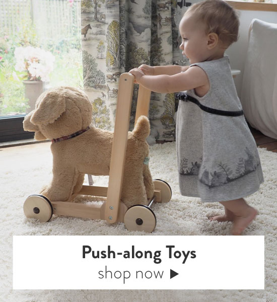 Shop Push along toys and walkers
