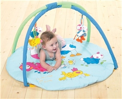 Jane Activity Play Gym